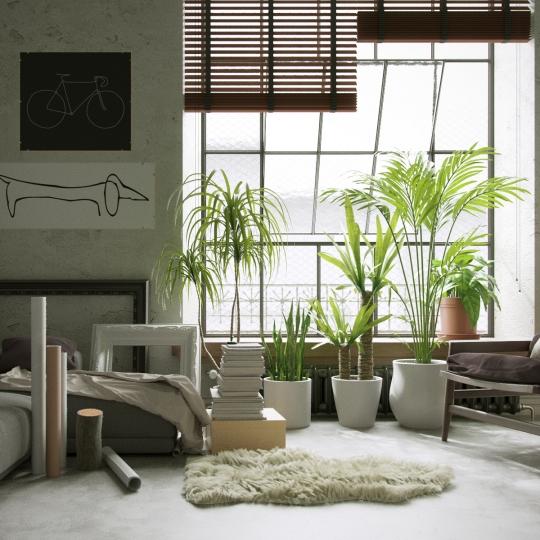 chocofur blender 3D model Interiors Interior Scene 02