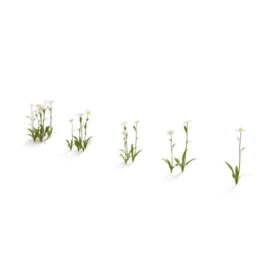 chocofur blender 3D model Grass Grass_05