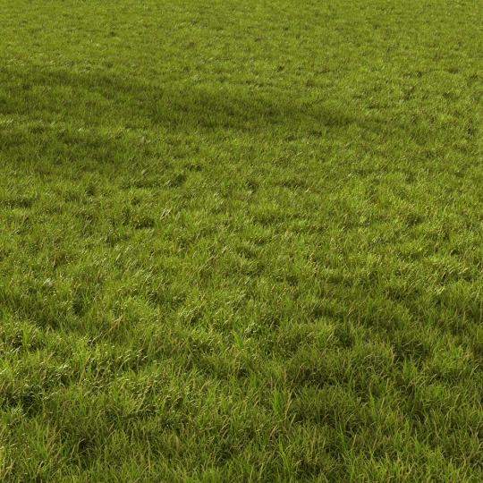 chocofur blender 3D model Grass Grass_02