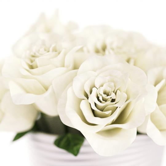 chocofur blender 3D model Flowers Flowers 04
