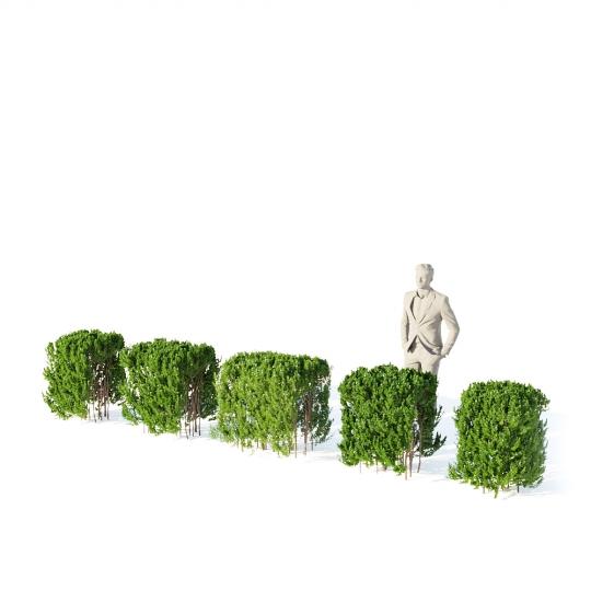 chocofur blender 3D model Bushes Bush Hedge 01