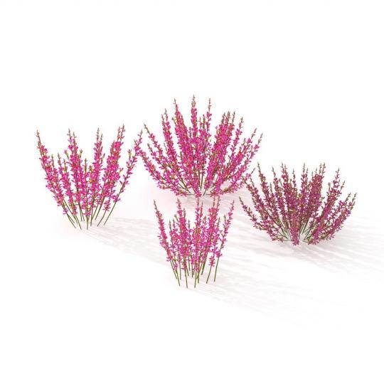 chocofur blender 3D model Grass Grass_09