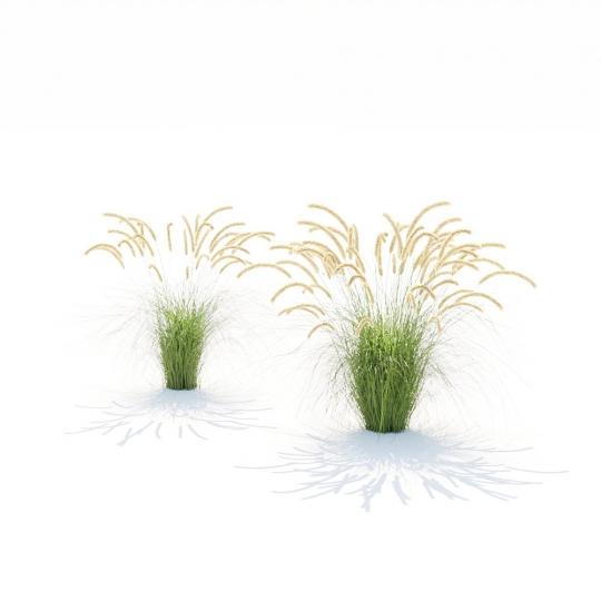 chocofur blender 3D model Grass Grass_17