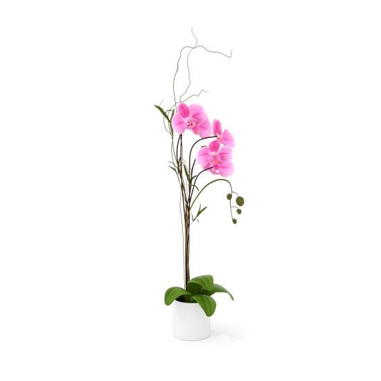chocofur blender 3D model Flowers Flowers 13