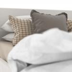 chocofur blender 3D model Beds Bed 06